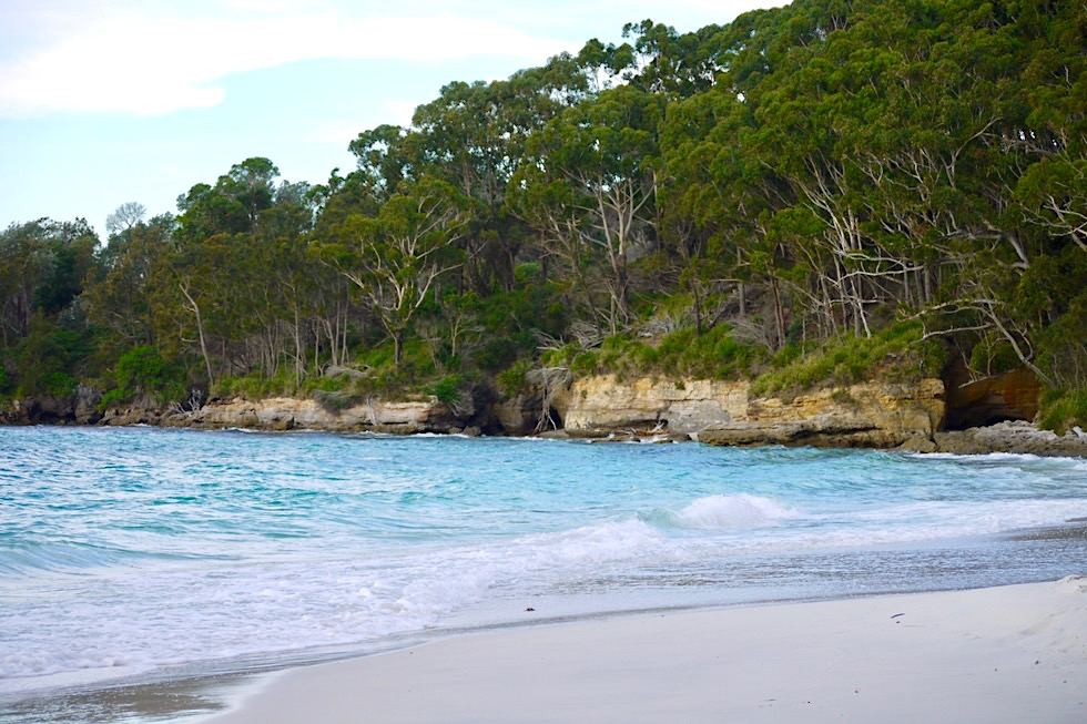 Booderee National Park - Murrays Beach: ein idealer Schnorchelspot - New South Wales