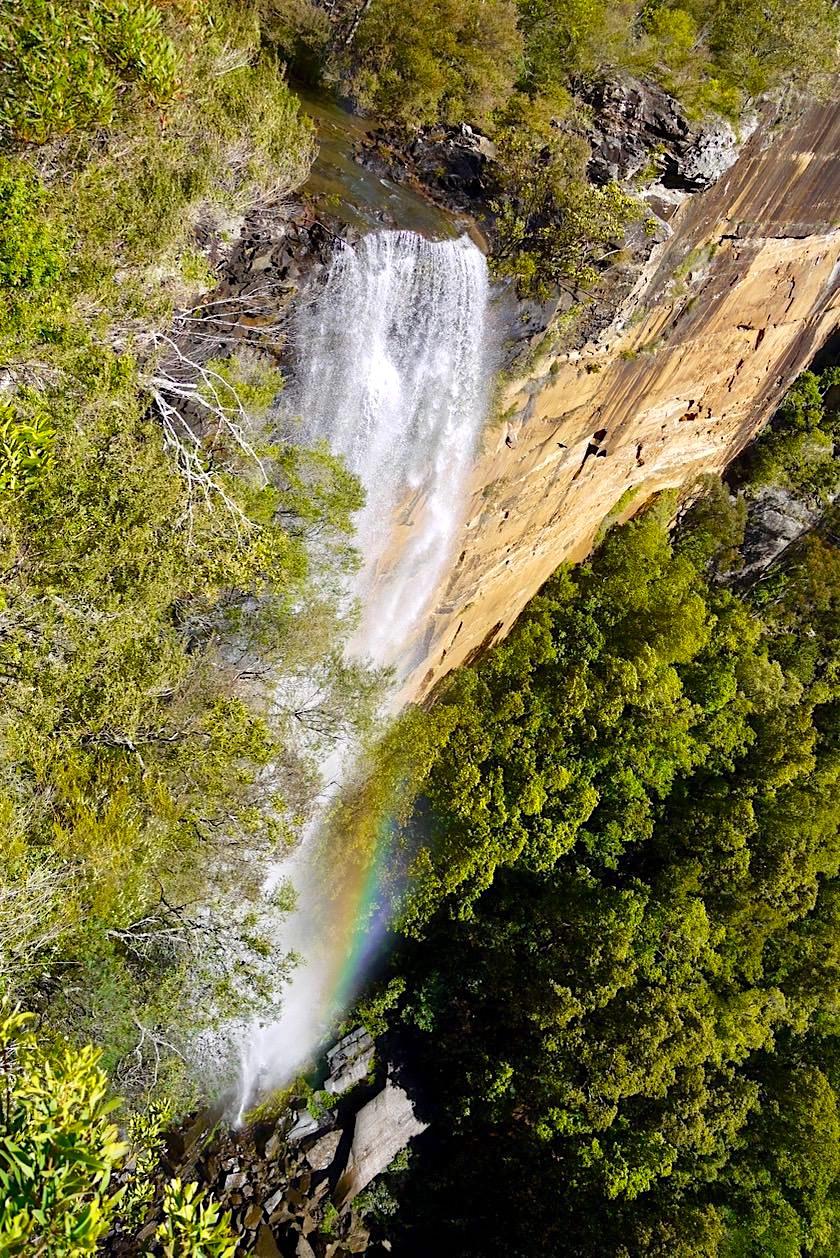 Fitzroy Falls - Spektakulärer Wasserfall im Morton Nation Park - Shoalhaven Region - New South Wales