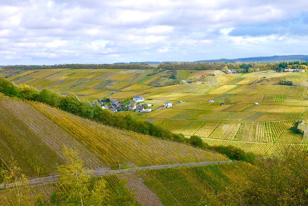 Klüsserather Sagenweg: Seitensprung Wanderung - Ausblick über Weinberge - Rheinland-Pfalz Reisetipps
