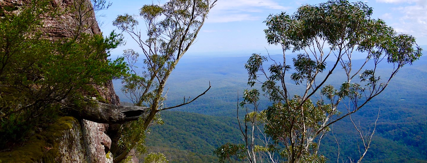 Pigeon House Mountain Wanderung – Morton National Park Highlight