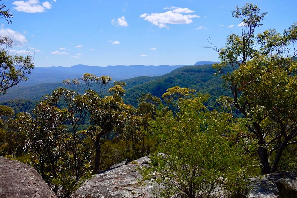 Pigeon House Mountain - Ausblick auf die ursprüngliche Budawang Wilderness Area - Morton National Park - New South Wales