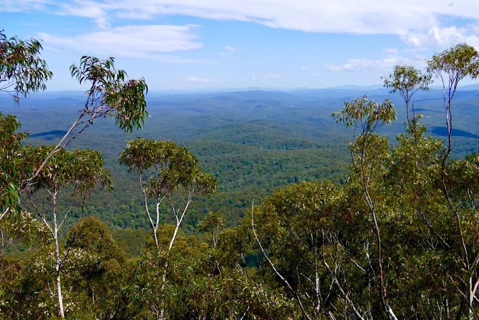 Pigeon House Mountain - Ausblick von einem Aussichtspunkt bis an die Küste - Morton National Park - New South Wales