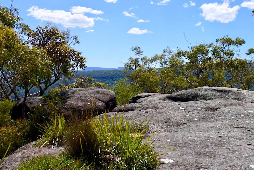 Pigeon House Mountain - Fantastischer Aussichtspunkt auf der Hälfte der Wanderung - New South Wales