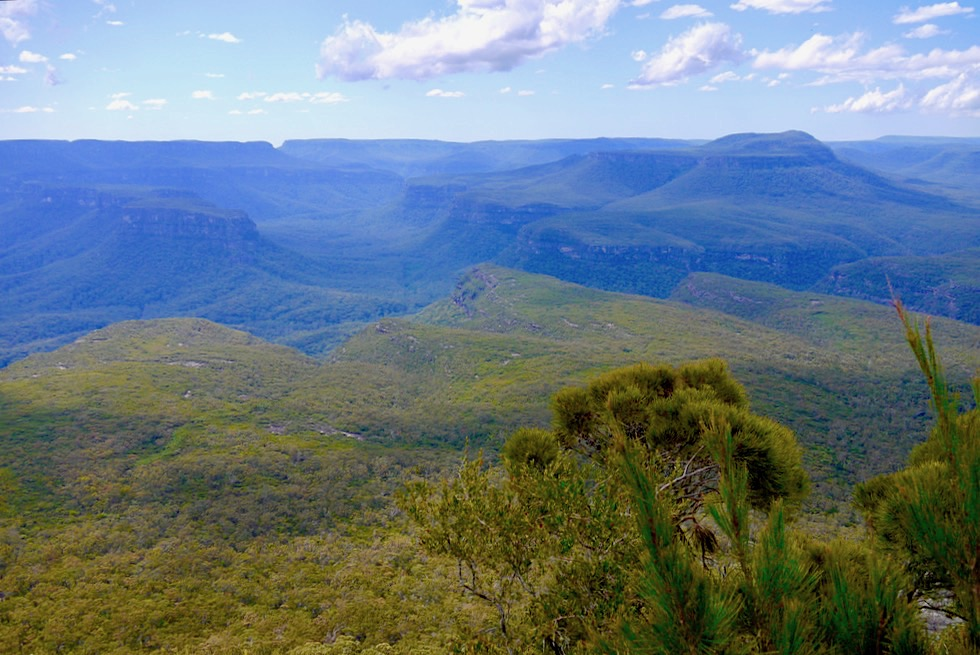 Pigeon House Mountain - Fulminanter Gipfel & faszinierende Ausblicke - Morton National Park Highlight - New South Wales