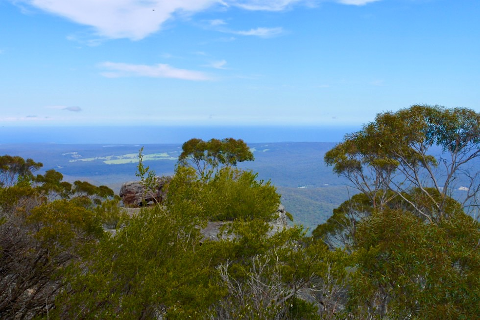 Pigeon House Mountain - Gipfelblick aus 720 m Höhe - New South Wales