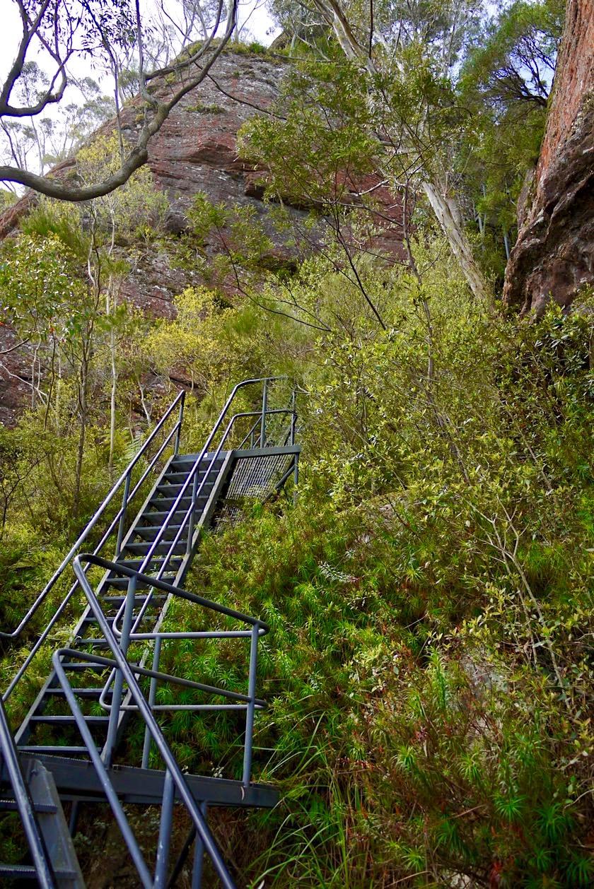 Pigeon House Mountain - Metalltreppe führt die letzten Meter hinauf auf den Gipfel - Morton National Park - New South Wales