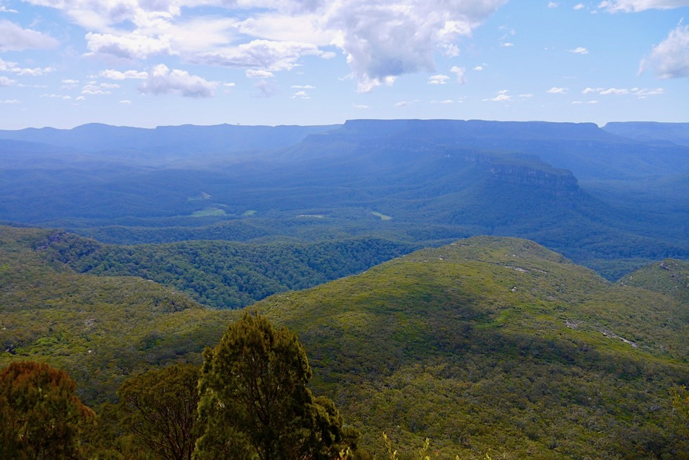 Pigeon House Mountain Summit Walk - Ausblick vom Gipfel - Morton National Park & Budawang Wilderness Area - New South Wales