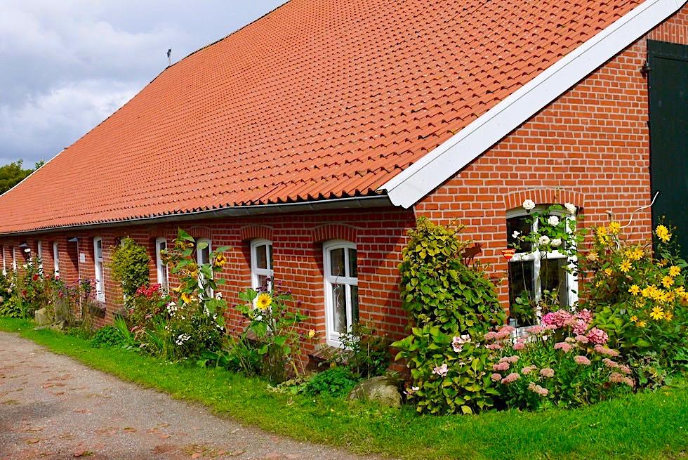 Warfendorf Pilsum mit seinen schönen Gulfhöfen & historischen Landarbeiterhäusern - Krummhörn - Ostfriesland