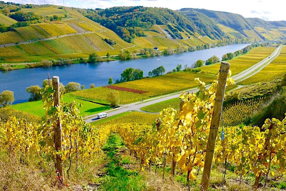 Faszinierende Rheinland-Pfalz Reisetipps - Die schönsten Burgen, Weinberge an Mosel & Rhein - Ein Reisebericht von einer Campervan-Tour