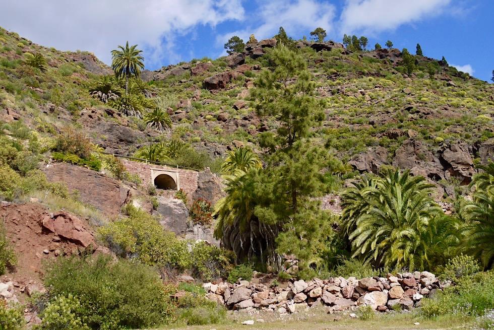 Mirador El Mulato - Palmen & Serpentinen - Gran Canaria