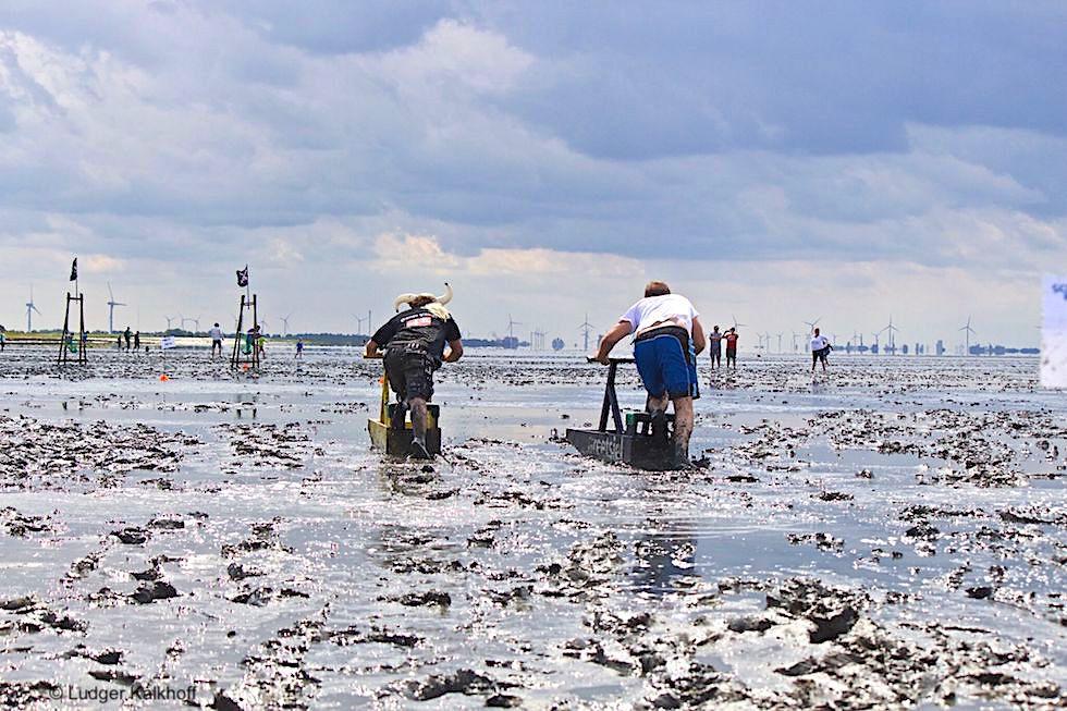 Schlickschlittenrennen Upleward: die Wältmeisterschaft - Krummhörn - Ostfriesland