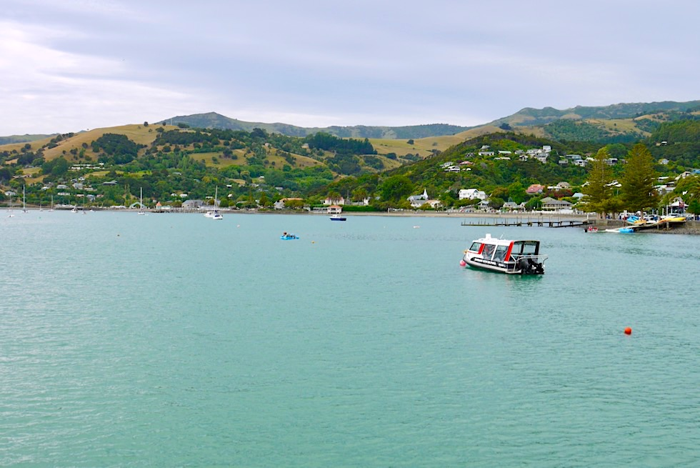 Französische Siedlung Akaroa & Bucht: beliebtes Ausflugsziel von Christchurch aus - Banks Peninsula - Chanterbury - Südinsel Neuseeland