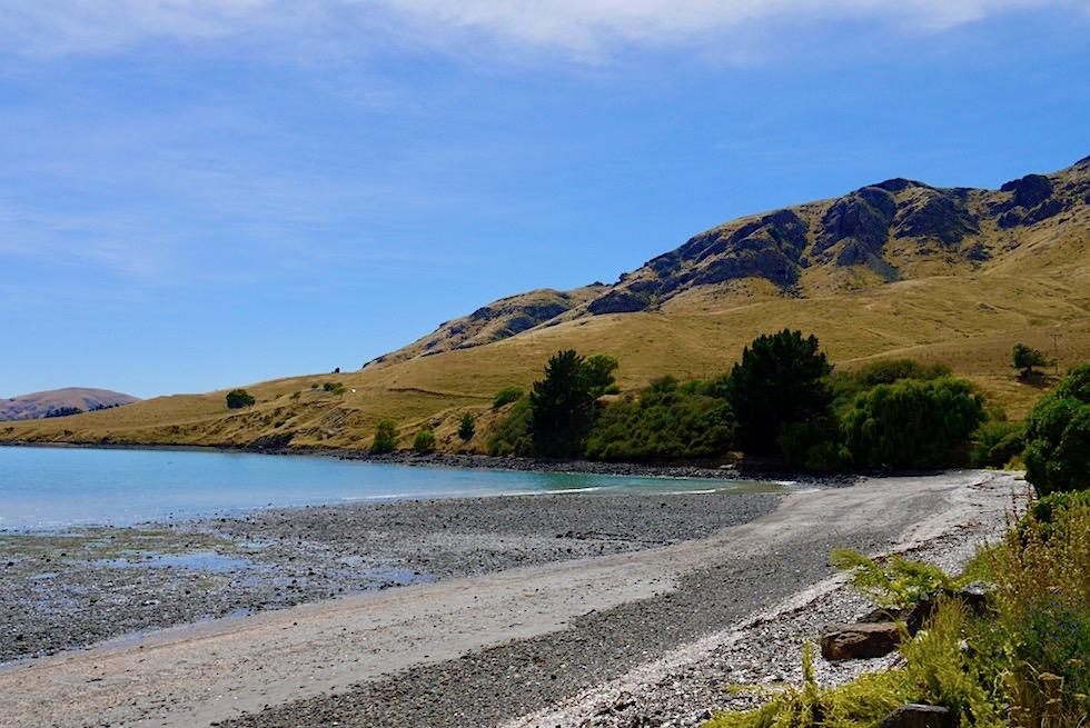 Kiesstrand & Hügel in der Nähe von Akaroa - Banks Peninsula - Südinsel Neuseeland