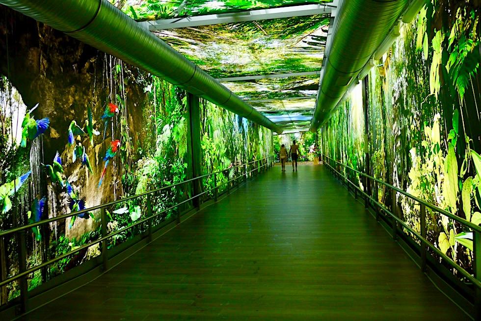 Amazonia - Leuchtende Tropensimulation: Durchgang von Halle zum Außenbereich - Tropical Islands, Brandenburg