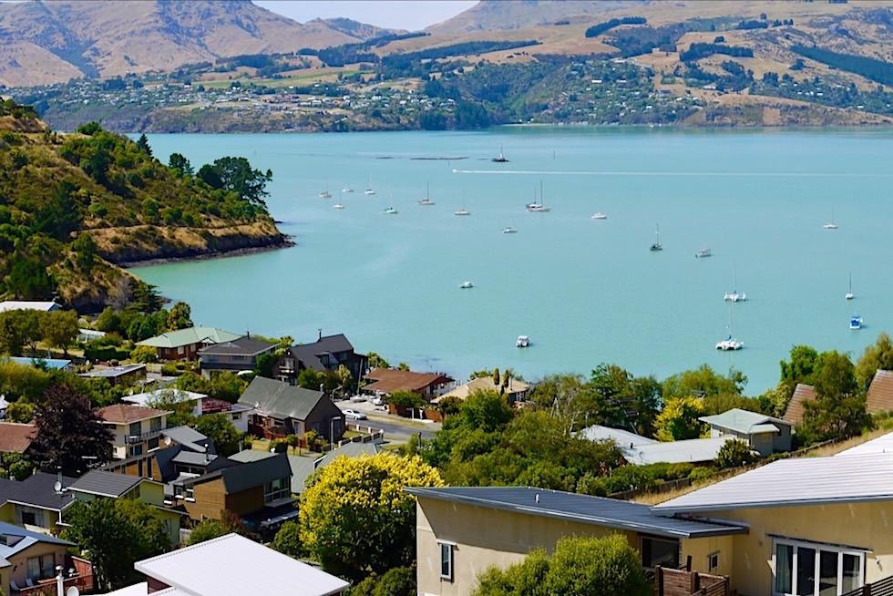 Banks Peninsula Roadtrip: Ausblick auf Lyttelton Harbour & seine Segelschiffe - Canterbury - Südinsel Neuseeland