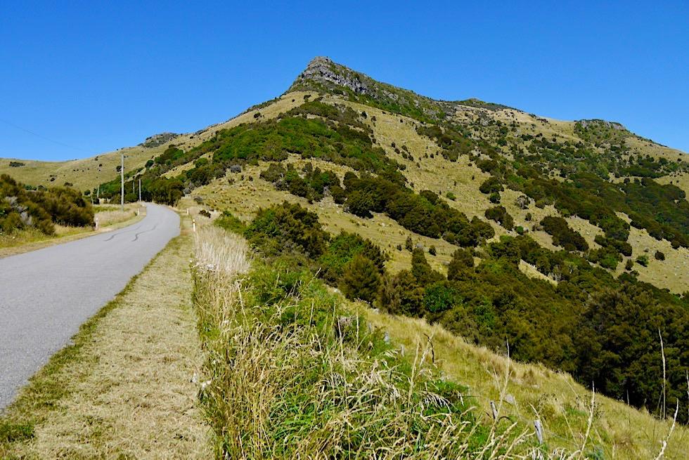 Wildschöne Banks Peninsula - Bergstraße zum Te Oka Reserve - Canterbury - Südinsel Neuseeland