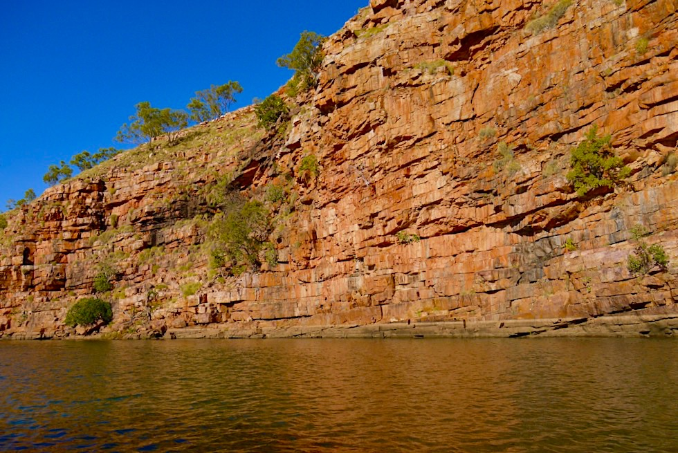 Chamberlain River Cruise - El Questro Wilderness Park - Kimberley Outback in Western Australia