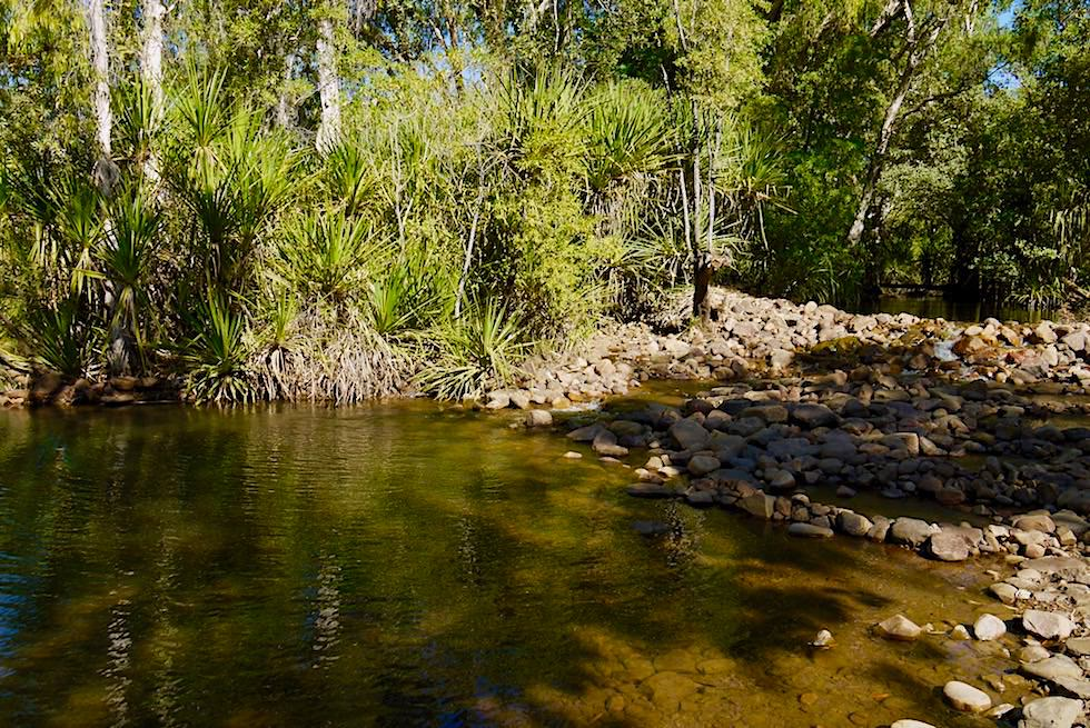 El Questro Station & Camping am Pentecost River - Kimberley - Western Australia