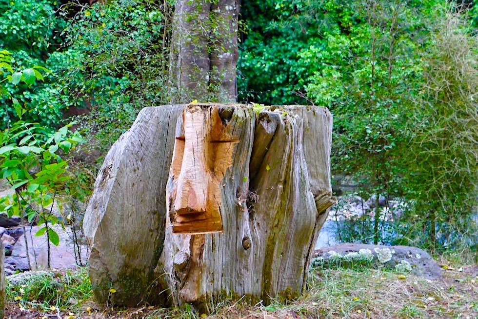 Little River Campground - Eine grüne Oase mit Holz-Skulpturen & riesigen Bäumen - Banks Peninsula - Neuseeland
