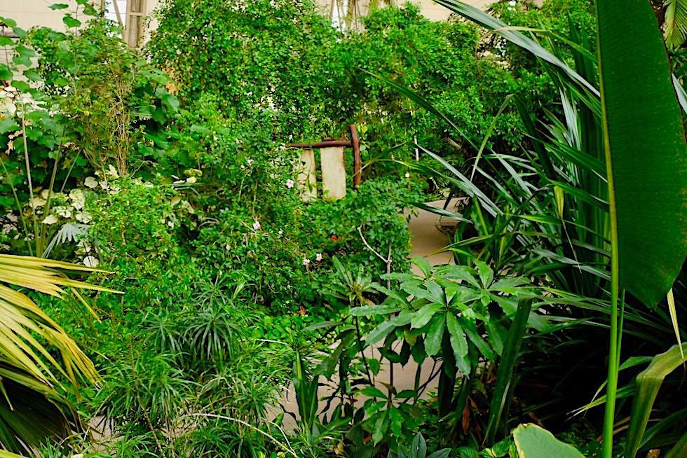 Tropical Island - Kleines Regenwald-Biotop in einer ehemaligen Luftschiffhalle - Brandenburg