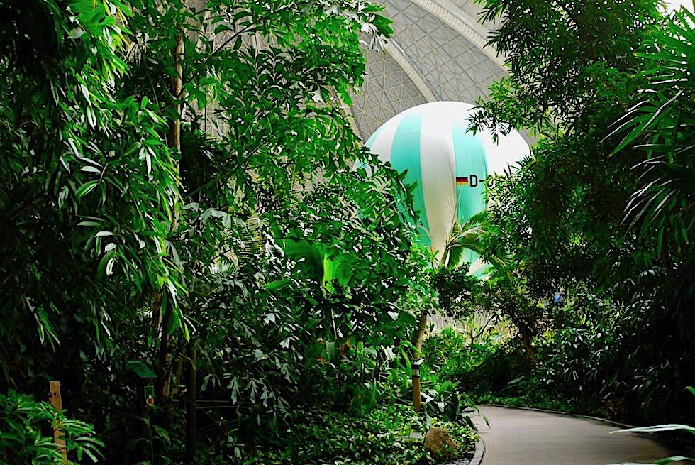 Tropical Islands - Echter Regenwald mit 600 verschiedenen Pflanzenarten - Brandenburg