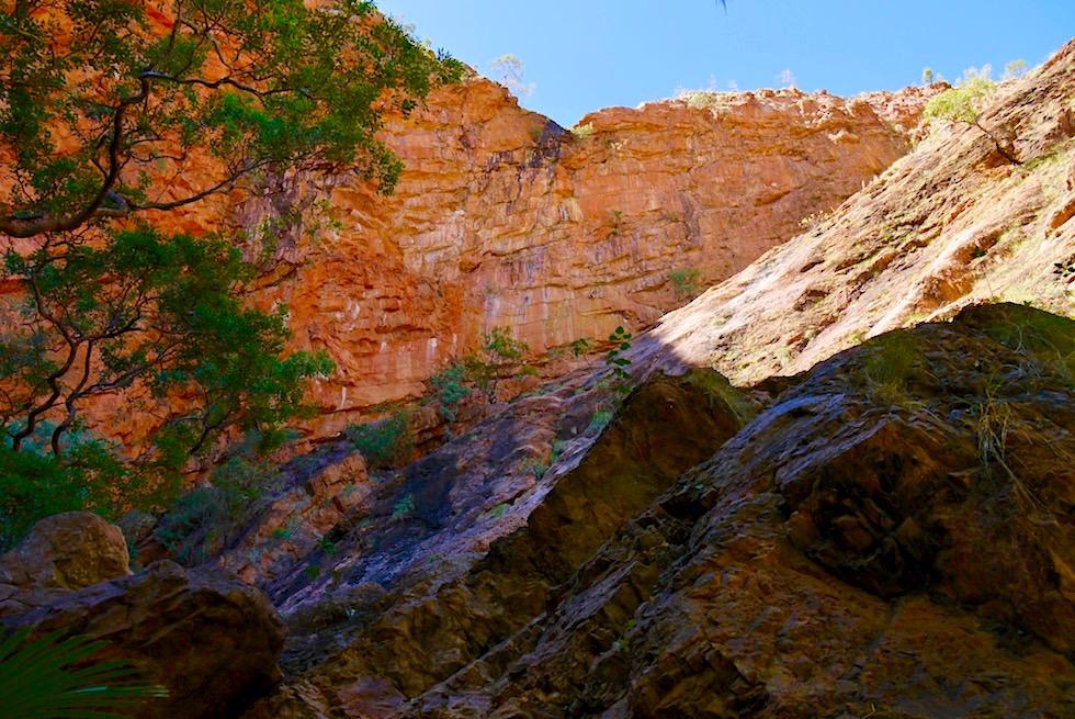 Zebedee Hot Springs - Felswände am Ende der Schlucht laden zum Klettern ein - El Questro Wilderness Park - Kimberley - Western Australia
