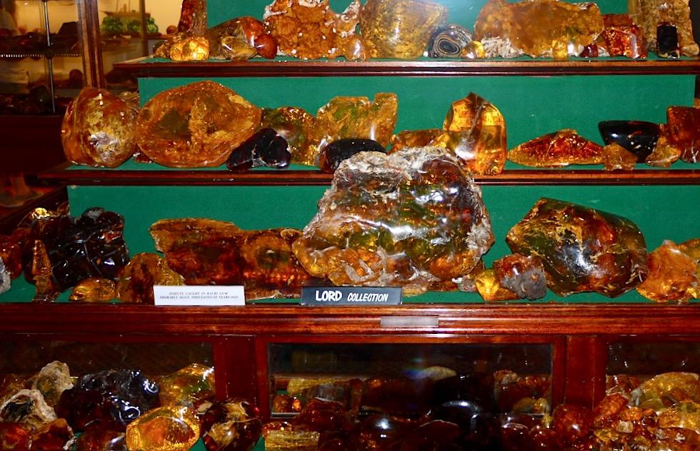 Kauri Museum - Weltgrößte Kauri-Harz Sammlung wird im Bernstein-Zimmer ausgestellt - Nordinsel Neuseeland