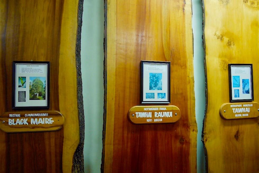 Kauri Museum - Neuseeland einheimische Bäume - Nordinsel Neuseeland