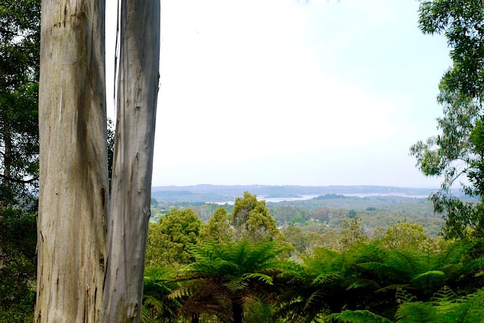Dampflok Fahrt mit Puffing Billy - Ausblick auf das Cardinia Reservoir, dem Trinkwasser-Stausee von Melbourne - Victoria