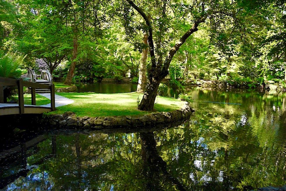 Sherbrooke Forest bei Melbourne - Alfred Niclas Garden: ein wunderschön angelegter, öffentlicher Garten - Victoria