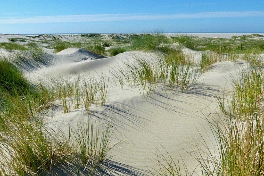 Borkum - Einsame Sanddünen-Landschaft - Ostfriesische Inseln