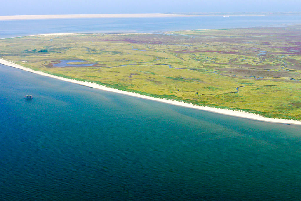 Nordsee Insel Memmert - Luftaufnahme aus dem Charterflieger - Ostfriesische Inseln