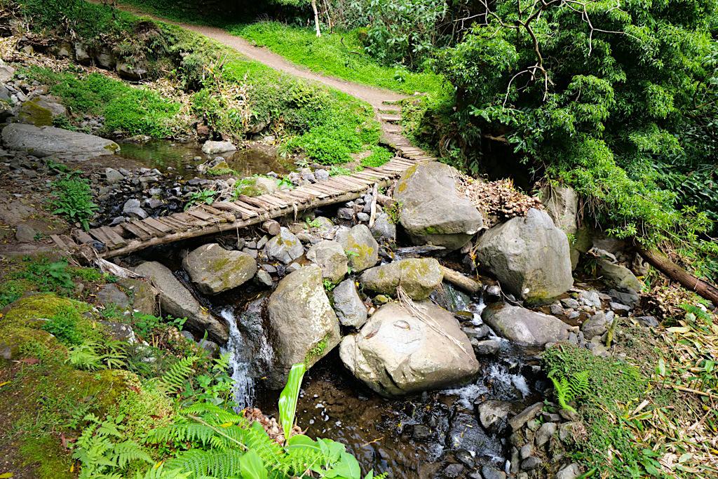 Salto do Prego - Wasserfall-Wanderung: der Aufstieg - Sao Miguel - Azoren
