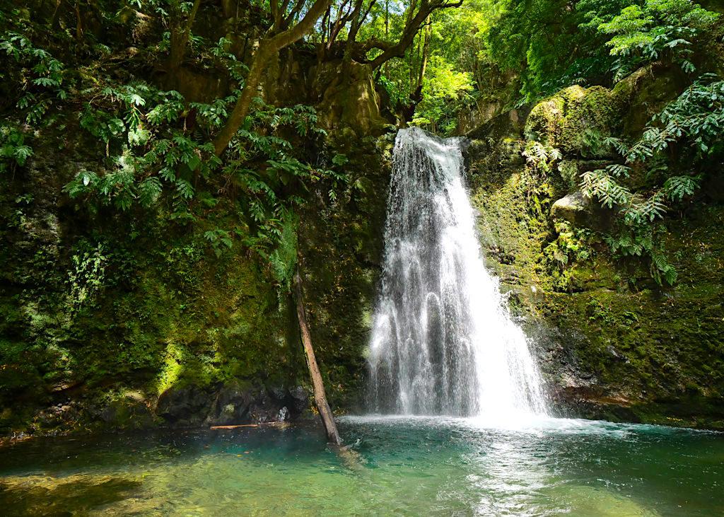 Salto do Prego Wanderung PRC 9 - Der Wasserfall liegt in einer Idylle aus leuchtendem Grün - Sao Miguel - Azoren