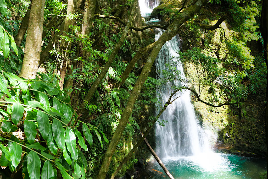 Salto do Prego Wanderung - Blick auf beeindruckende Wasserfall-Kaskaden - Sao Miguel - Azoren