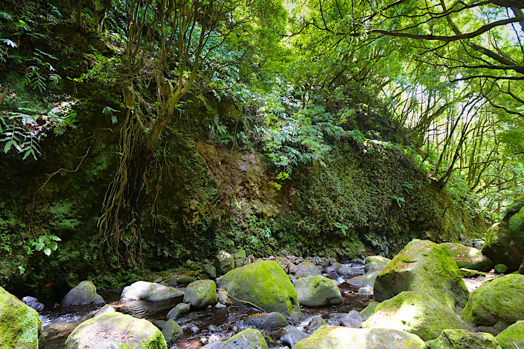 Salto do Prego Wanderung - Verlauf am Fuße des Wasserfalls - Sao Miguel - Azoren