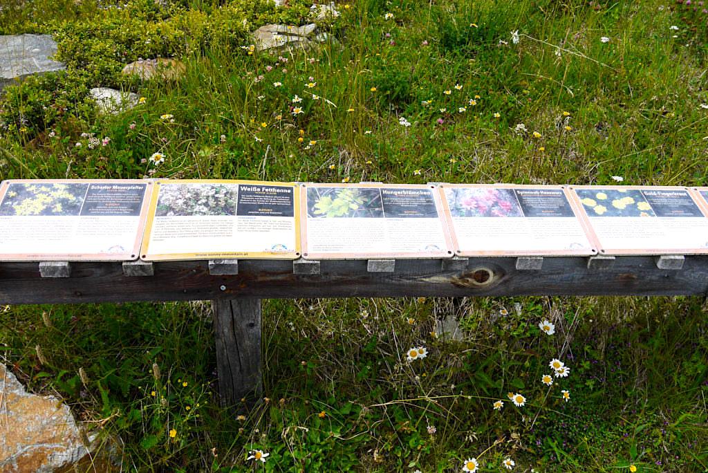 Bergstation Diasbahn - Pflanzenlehrpfad - Kappl im Paznauntal - Österreich
