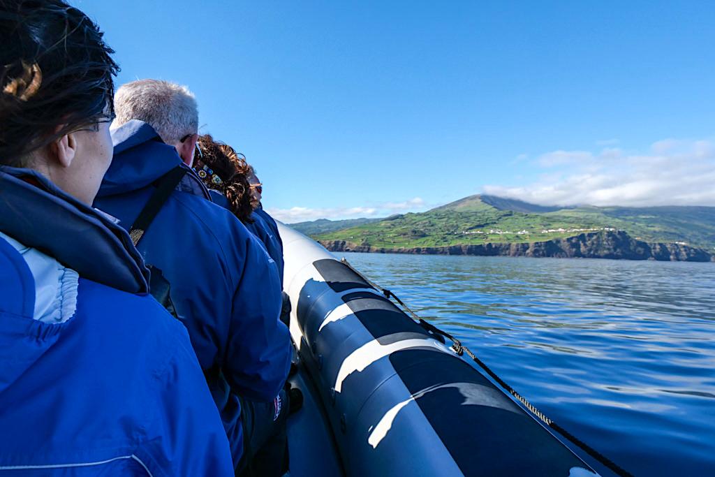 Espaco Talassa Walbeobachtungstour: faszinierende Tour, toller Service - Lajes do Pico - Azoren