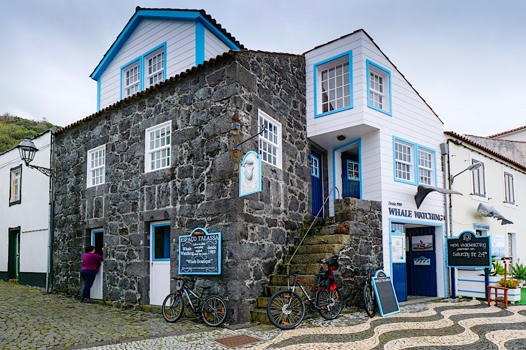 Espao Talassa: Bester Anbieter für Walbeobachtungstouren - Lajes do Pico - Azoren