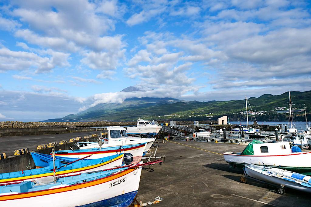 Der Haufen von Lajes do Pico - Walbeobachtung auf Pico: beste Chancen auf Blauwale - Azoren Highlight