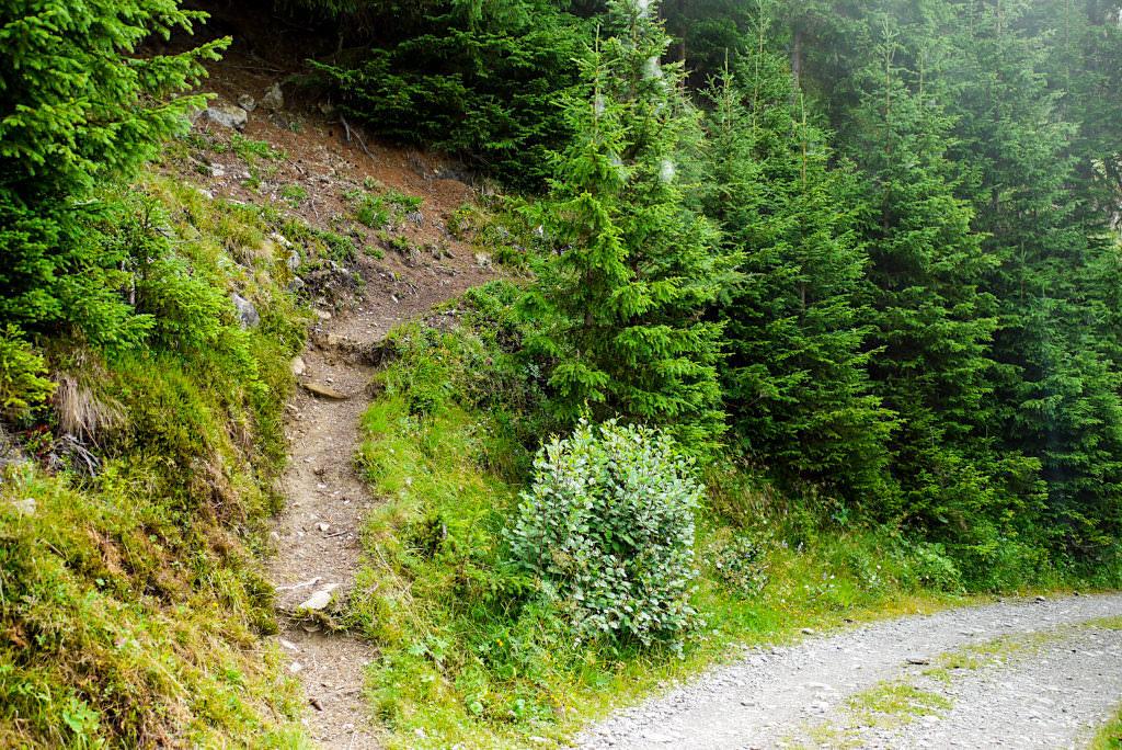 Seßladalpe Wanderung - Kappl, Dias, Niederelbehütte - Paznaun - Österreich