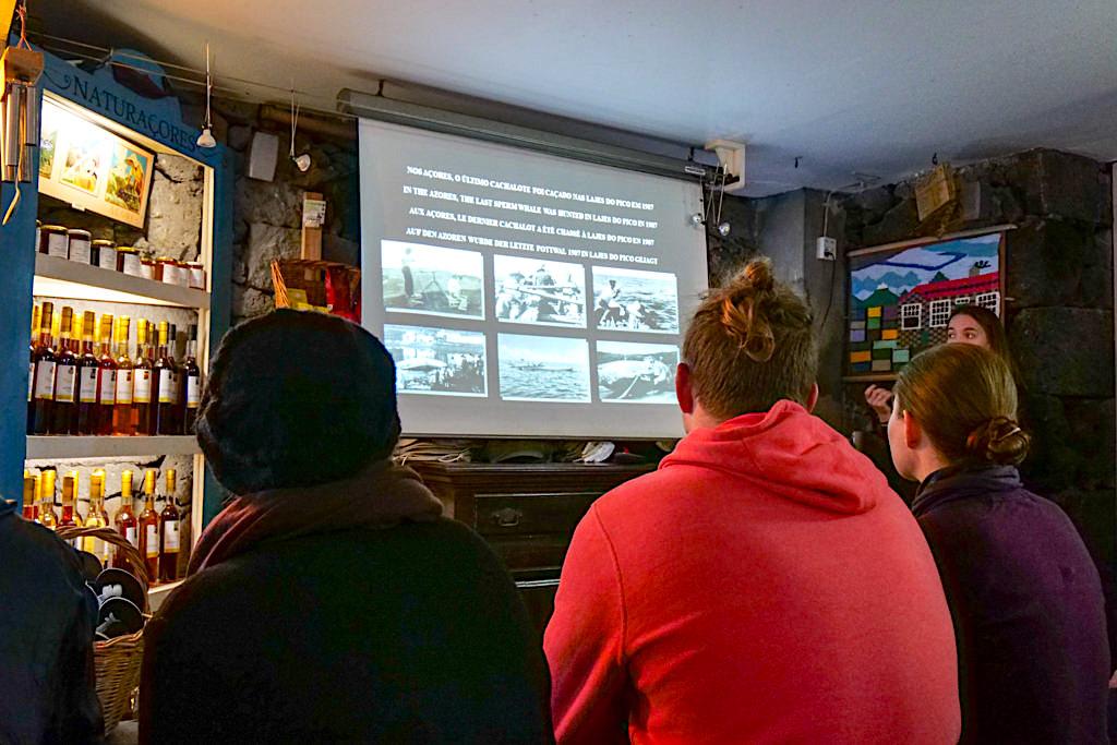 Walbeobachtung bei Espaco Talassa - Briefing zum Thema Walfang & Wale beobachten auf Pico - Azoren