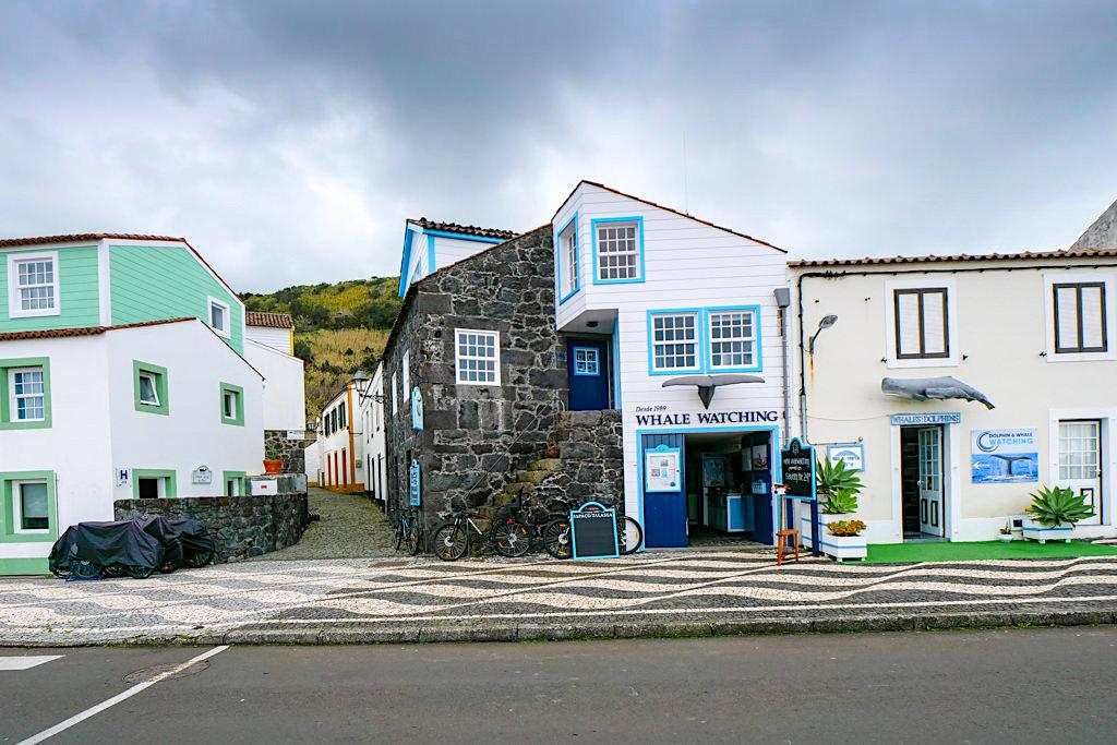 Walbeobachtung auf Pico - Espaço Talassa & andere Anbieter am Hafen von Lajes - Azoren