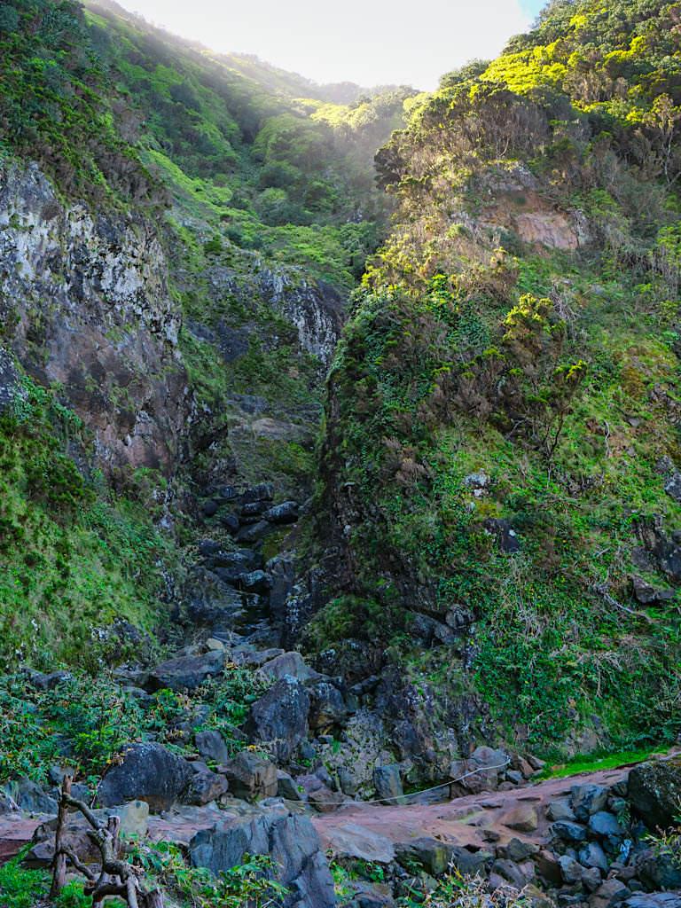 Eindrucksvolle Felswände auf der Wanderung von Caldeira de Santo Cristo zur Faja Cubres - Sao Jorge, Azoren