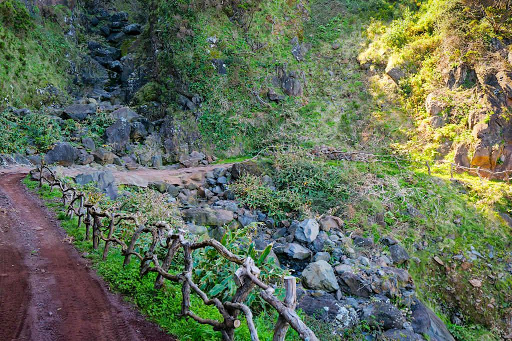 Von Caldeira de Santo Cristo zur Faja dos Cubres - Schöne Azoren-Wanderung auf Sao Jorge