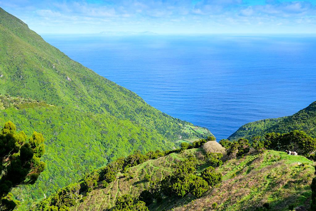 Caldeira da Cima - Grandiose Wanderung von Serra do Topo über Caldeira de Santo Cristo zur Faja dos Cubres - Sao Jorge - Azoen