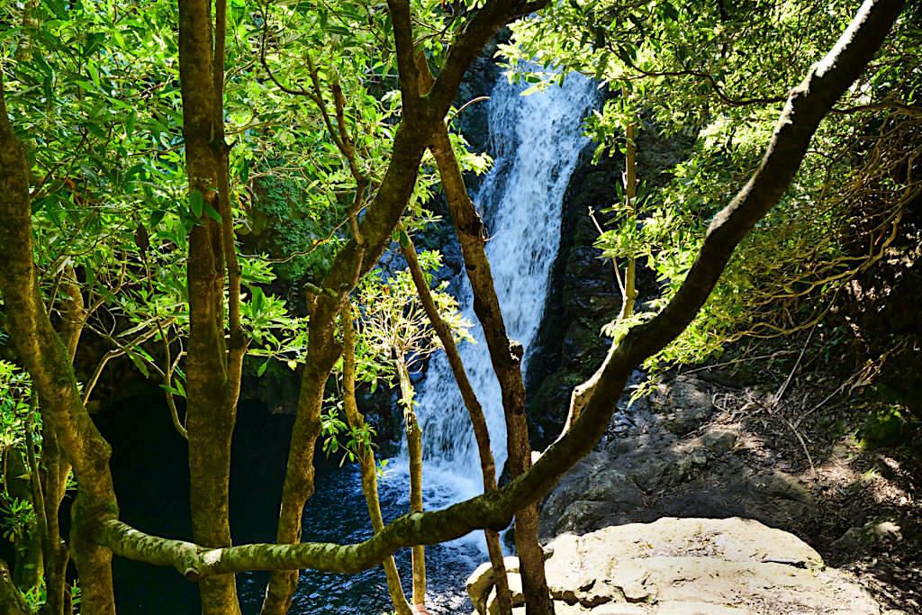 Caldeira da Cima - Tosender Wasserfall bietet im Sommer Erfrischung - Sao Jorge, Azoren