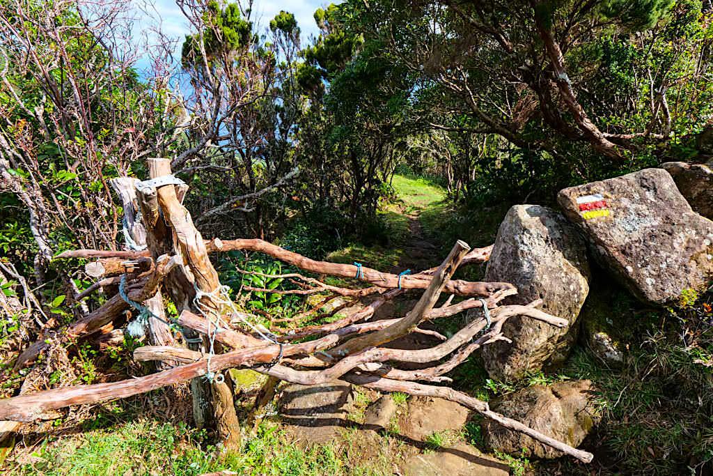 Caldeira da Cima - Weidezäune zwischen Kunstwerk und Rätsel - Sao Jorge - Azoren