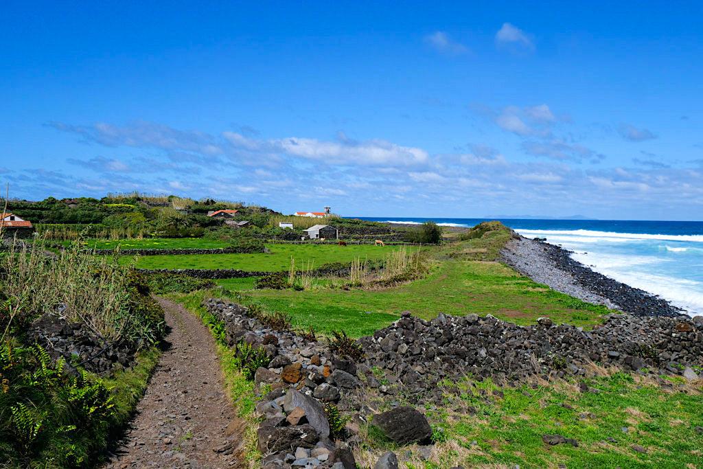 Faja da Caldeira de Santo Cristo - Weide- & Farmflächen wurden mühsam der Natur abgerungen - Sao Jorge - Azoren