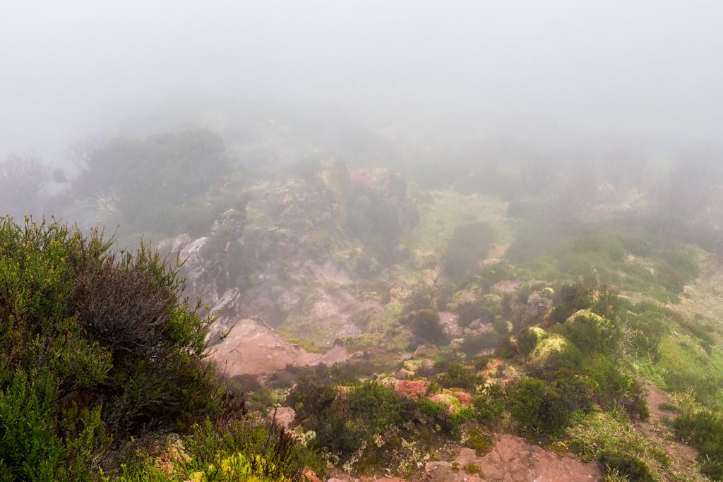 Furnas do Enxofre - Nichts als Nebel bei den Schwefelquellen von Terceira - Azoren